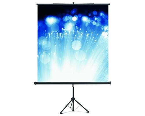 Экран проекционный, на штативе, 200х200см, MAGNETOPLAN Cineflex