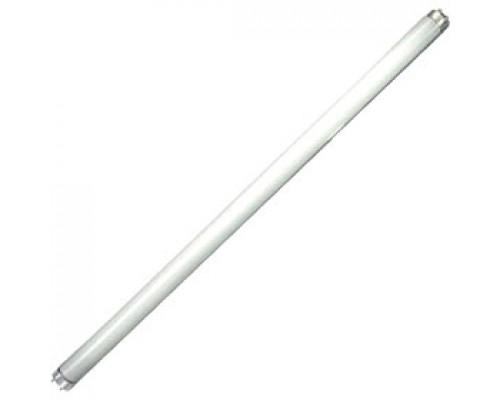 Лампа люминесцентная 18W/33 G13 PHILIPS, холодный белый, 25шт.