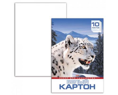 Набор картона А3 10л, мелован., HATBER Снежный барс, белый