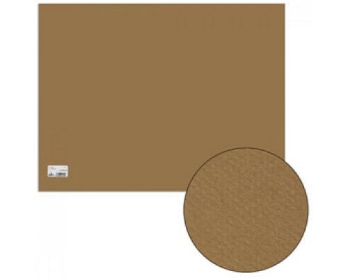 Бумага для пастели А2+ 500х650мм, 160г/м2, 2-сторон., CANSON Mi-Teintes, св.-коричневый
