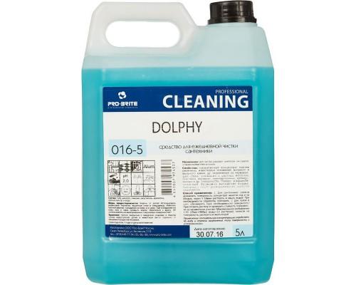 Профессиональное кислотное средство для ежедневной чистки сантехники Pro-Brite Dolphy 5 лов