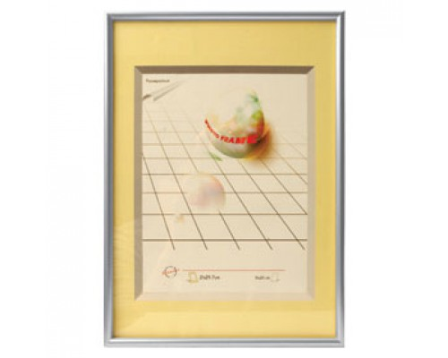Рамка для документов настенная, 21х29.7см, стекло/пластиковый профиль под серебро