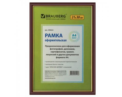 Рамка для документов настенная, 21х29.7см, стекло/пластиковый профиль, красное дерево с позолотой