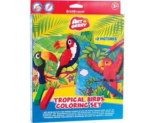 Пластилин мягкий 6цв+восковые мелки 8цв+2 раскраски Tropical Birds Coloring Set Artberry, разноцветн.