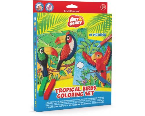 Пластилин мягкий 6цв+восковые мелки 8цв+раскраски 2шт Tropical Birds Coloring Set Artberry, разноцветн.