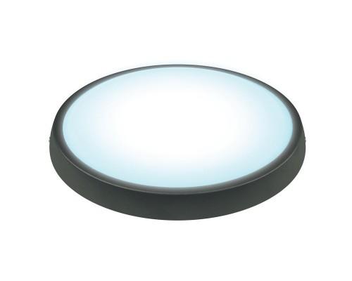 Светильник светодиодный 7 Вт холодный свет овальный
